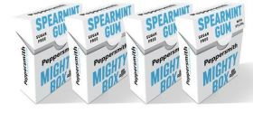 Peppersmith Xylitol English Peppermint Dental (Sugar Free) Chewing Gum 15g x12
